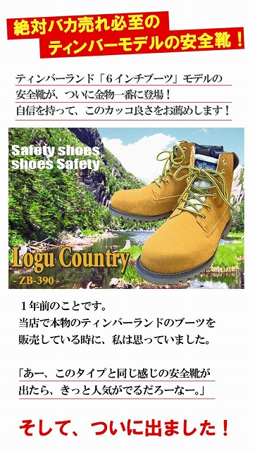 shoes103001.jpg