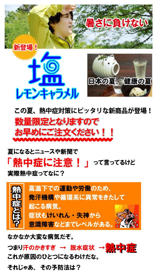 安部製菓 塩レモンキャラメル 1kg