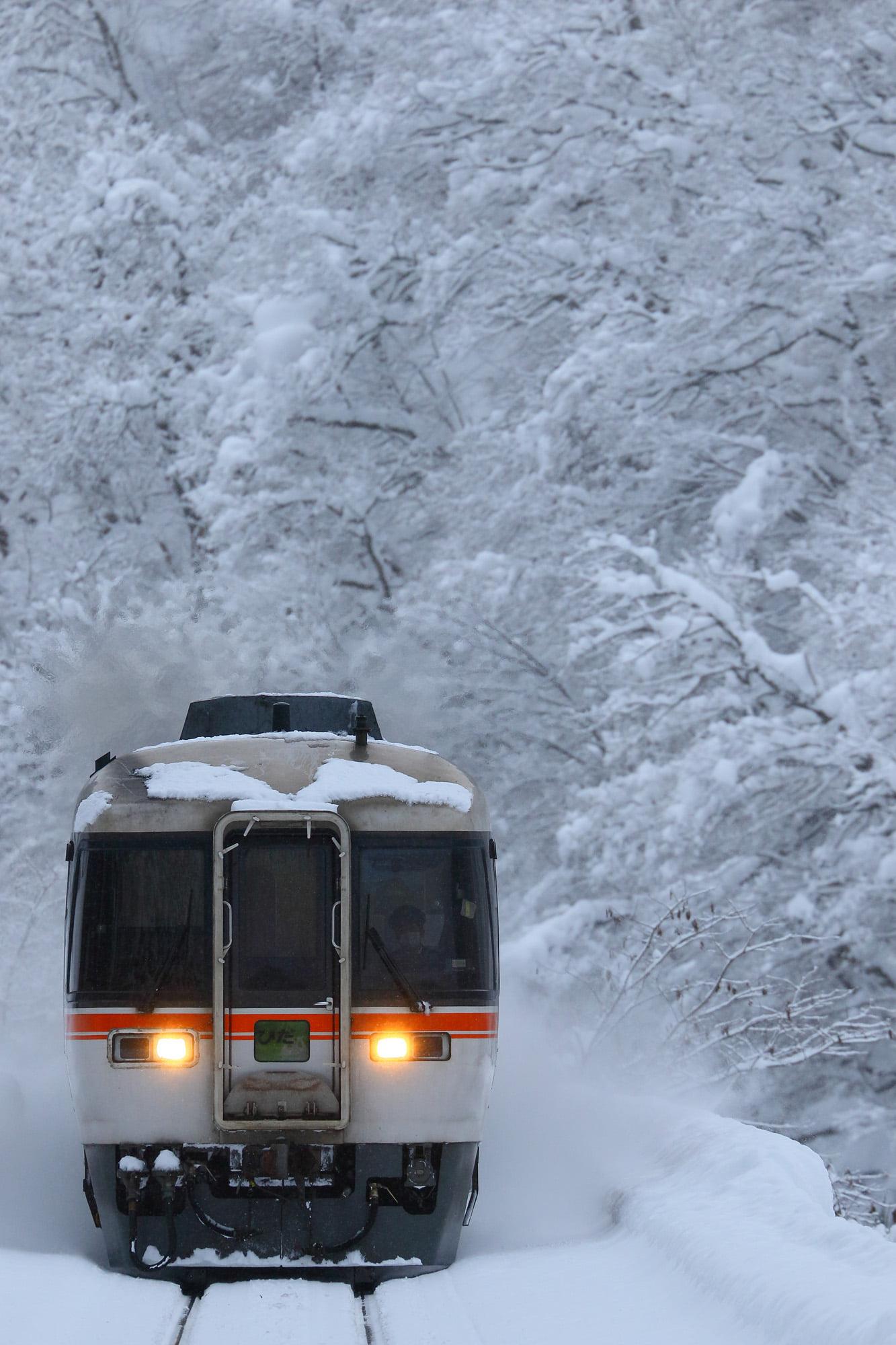 雪の中を走る特急ワイドビューひだ